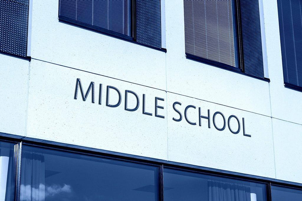 mejor colegio bilingue en madrid