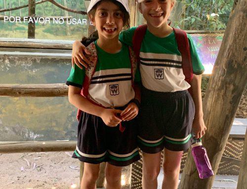 Los alumnos de 1º y 2º de Primaria visitan el parque zoológico de Madrid
